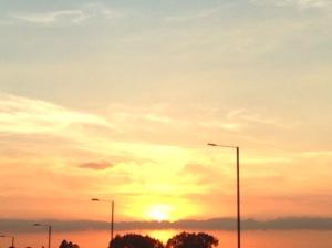 Beauty on a motorway