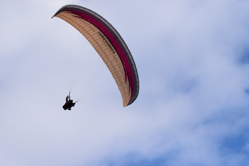 Freedom in Flight